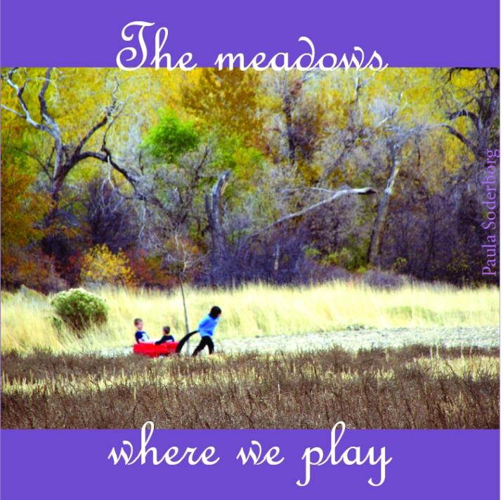 meadowsplay