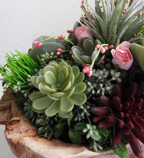 succulent9.jpg